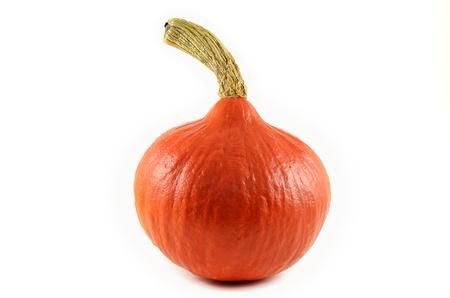Little single orange pumpkin isolated Stock Photo
