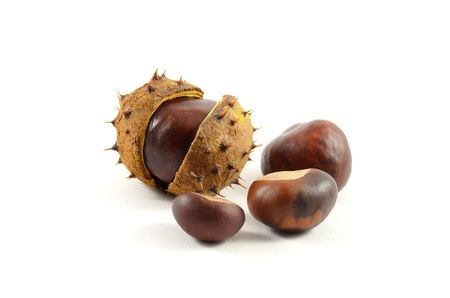 Chestnuts isolated on the white background