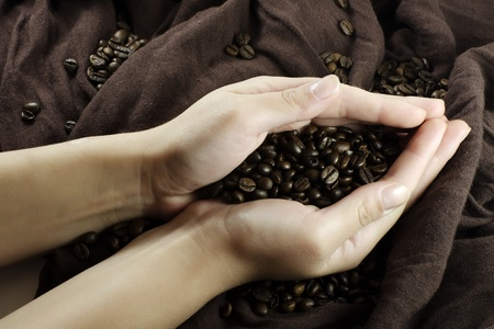 Grains of black roasted coffee in hands