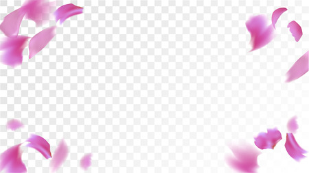Red Rose Petals Falling Down. Isolated Vector illustration of Rose Petals. Flying Red Sakura Blossom Background. Design of Greeting or Invitation Card.