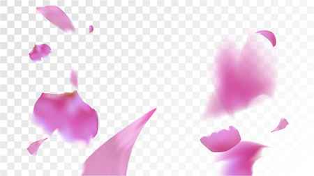Pink Rose Petals Falling Down. Isolated Vector illustration of Rose Petals. Flying Pink Sakura Blossom Background. Design of Greeting or Invitation Card.