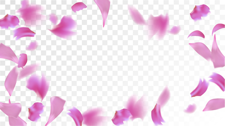 Pink Sakura Petals Falling Down. Isolated Vector illustration of Sakura Petals. Flying Cherry Blossom Background. Design of Greeting or Invitation Card.