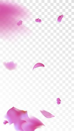 Pink Rose Petals Falling Down. Isolated Vector illustration of Rose Petals. Flying Pink Sakura Blossom Background. Design of Greeting or Invitation Card.