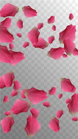 Vector Petal. Botanical Invitation. Isolated Card. Light Blossom. Vintage Silk Bloom. Flying Confetti. Rose Vector Petal. Romance Decoration. Valentine Wedding Petals.