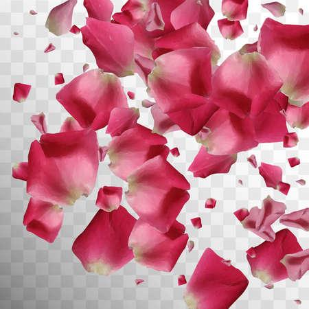 Botanical Leaf. Light Pattern. Falling Fresh Bloom. Silk Template. Romantic Decoration. Isolated Petal. Air Botanical Leaf. Summer Composition. Botanical Romance Petals.