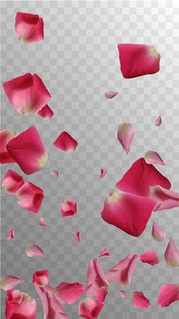 Beauty Invitation. Organic Invitation. Delicate Wedding Card. Fresh Pattern. Romance Soft Petals. Spring Confetti. Real Beauty Invitation. Isolated Wallpaper. Valentine Decor.