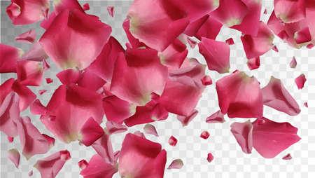Realistic Invitation. Isolated Illustration. Beautiful Petal. Vintage Invitation. Romantic Falling Leaf. Fresh Realistic Invitation. Rose Pattern. Summer Floral Card. Vector Concept.