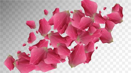 Delicate Texture. Spring Closeup. Vintage Vector Petal. Floral Template. Botanical Illustration. Delicate Design. Beauty Delicate Texture. Romance Wallpaper. Realistic Luxury Bloom. 免版税图像 - 156783553