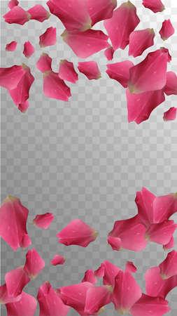 Real Wallpaper. Delicate Composition. Botanical Petal. Summer Invitation. Valentine Wedding Card. Light Real Wallpaper. Beauty Blossom. Natural Floral Decor. Vector Confetti.