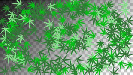 Cannabis Texture. Organic Herbal Design. Green Agriculture Illustration. Medical Texture. White Ganja Collection. Abstract Cannabis Texture. Transparent Medicinal Production.
