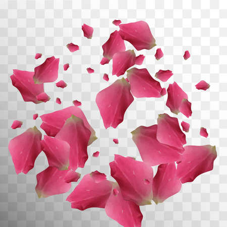 Real Closeup. Rose Texture. Summer Vector Leaf. Silk Pattern. Falling Wallpaper. Romantic Natural Decor. Light Real Closeup. Beautiful Decoration. Botanical Card.