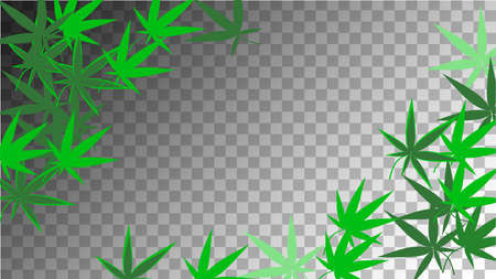 Hemp Design. Hemp Design. Transparent Herbal Wallpaper.  Grass Organic Texture. Yellow Marijuana Illustration.  Abstract  Hemp Design. Green Agronomy Silhouette.