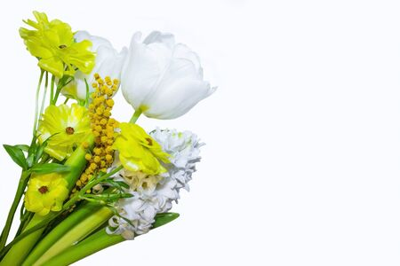 Bouquet of spring flowers Isolated on a white background. Greeting horizontal card for International Womens Day. Hyacinth, mimosa, tulip, buttercup. Archivio Fotografico