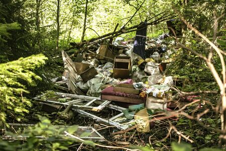 Garbage dump in the forest. Human influence on nature. Household waste, people illegally thrown garbage into forest.