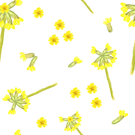cowslip: Fresh floral seamless pattern with cowslip. Hand painted watercolour vector. Can be used for fabric, textile, wrapping and packaging.