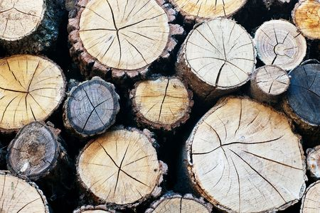 Closeup of chopped firewood logs Stock Photo