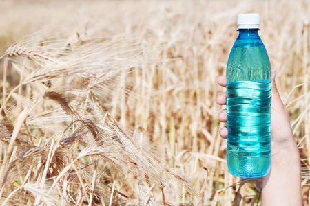 Hand holding bottle of water against ripe wheat with selective focus   photo