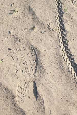foot path: Boot print and bicycle tire track on sand with green grass growing and selective focus Stock Photo