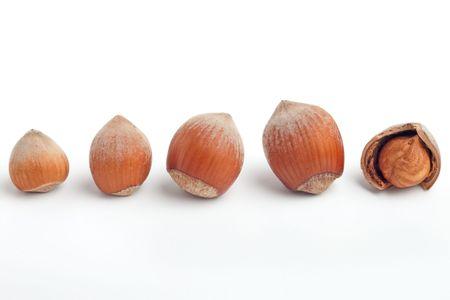 decreasing in size: Riga di nocciole di aumento delle dimensioni con cracking un mostrando kernel isolato on white