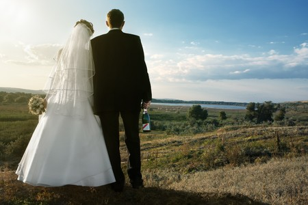 Backs of bride and groom holding champagne against landscape with blue sky photo