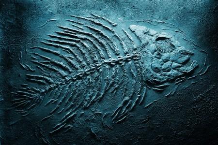 Closeup di grandi pesci fossili ossatura sul fondo del mare