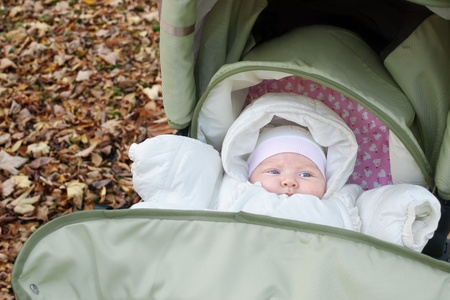 baby dressed in warm clothes lying in pushchair outdoors in autumn  photo
