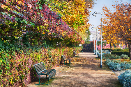 Sunlit park with benches and blue sky Stock Photo