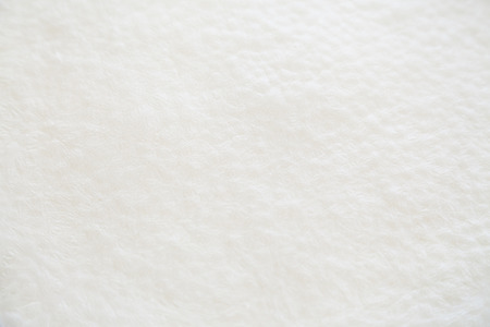 solidified: Closeup of white solid milk skin