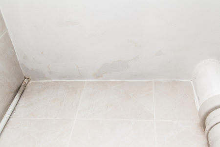 detriment: Ceiling in the bathroom damaged by flooding