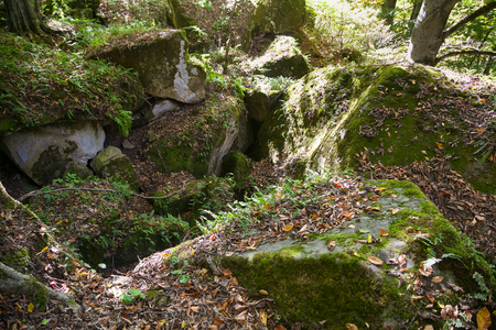 dolmen ruins covered by moss and fern in a forest Stock Photo