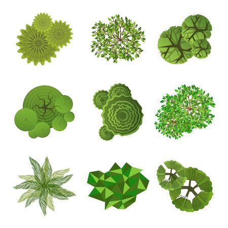 Árboles vista superior para el diseño de paisajes utilizan en sus proyectos de diseño Ilustración de vector