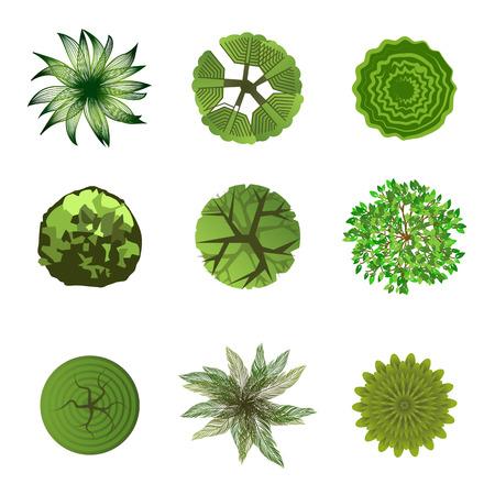 상단: 디자인 프로젝트에서 나무 조경 디자인 사용을위한 평면도