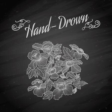 chalk outline: Vector set of chalk style hand drawn flowers Illustration