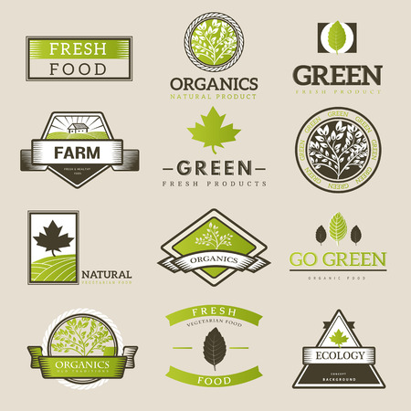 Organic food  ,labels and vector elements. Fresh and natural food. Illustration