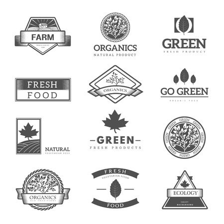 environment: Organic food  ,labels and vector elements. Fresh and natural food. Illustration