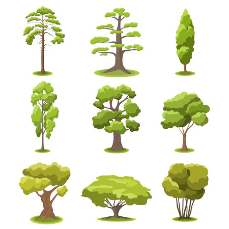 Set of flat stylized trees. Natural vector illustration.