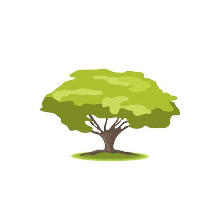 árbol estilizado en el fondo blanco. Ilustración de la naturaleza. Vista lateral Ilustración de vector