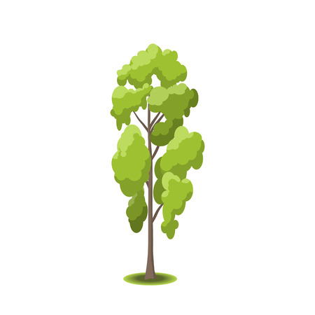 oak wood: Stylized tree on white background. Nature illustration. Side view