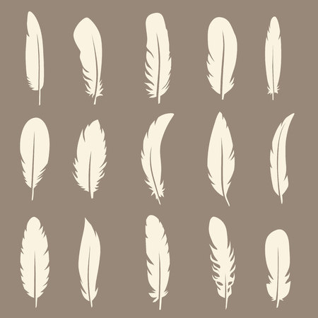poet: Vector group of feather. Silhouette set icons