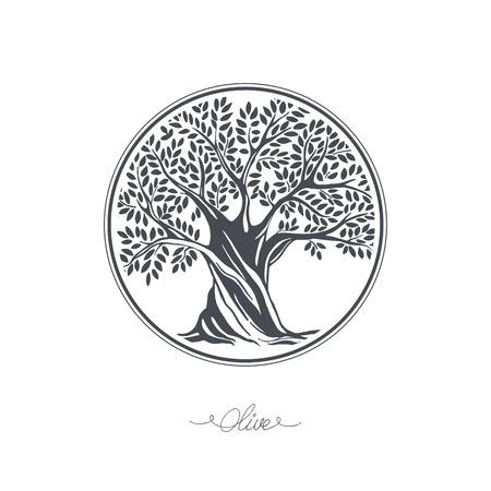 tree symbol: Hand drawn olive tree. Vector sketch illustration Illustration