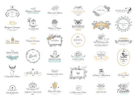 Ensemble d'ornements et de cadres calligraphiques de fioritures. Style rétro et moderne des éléments de conception, des signes et des logos. Modèle vectoriel. Modèles de collection Logo