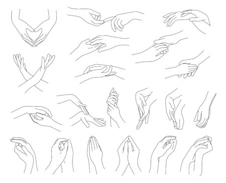 Collection of hands and fingers.