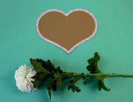 Love shape card and flower deco with green background