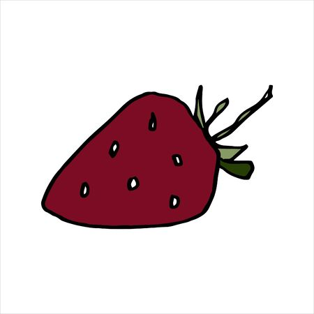 Isolated on white strawberry, Stock Illustration, vector, hand drawing, design element  for printing, scrapbooking, postcard