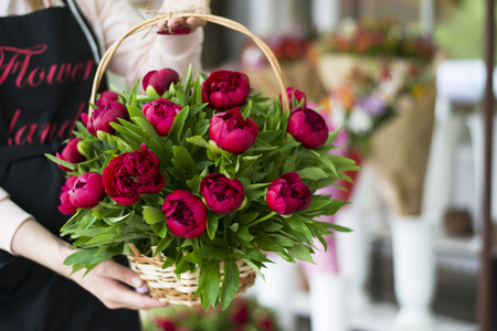Three dark pink peonies flowers in a vase indoors spring flowers spring flowers beautiful peonies in a bouquet basket with peonies in the hands of the seller of a flower boutique mightylinksfo