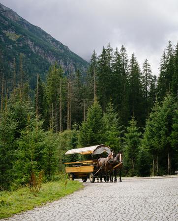 oko: Authentic horse-drawn carriage on the way to Morskie Oko lake, High Tatras, Poland