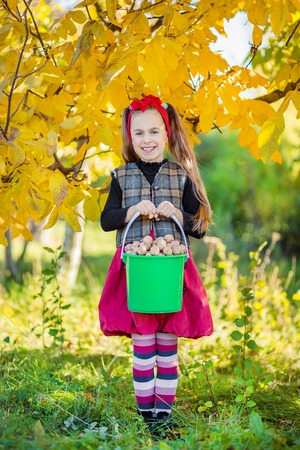 Cute girl with walnuts from the walnut harvest in the garden. Colorful and blurred walnut, located in the background.