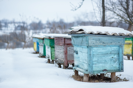 Group beehives in the winter garden with snow covering. Unpacking Beehives After Winter. Banco de Imagens