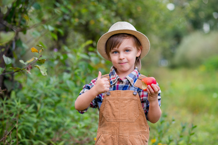 Portrait of one cute boy in a hat in the garden with a red apple, emotions, happiness, food. Autumn harvest of apples. Approving Gestures Stock Photos. Stockfoto