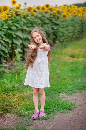Beautiful portrait of a girl with long hair on a background of a field with sunflowers. With joyful emotions, with outstretched meeting hands, looking into clasped hands.